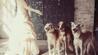 Inspiración para una boda inolvidable